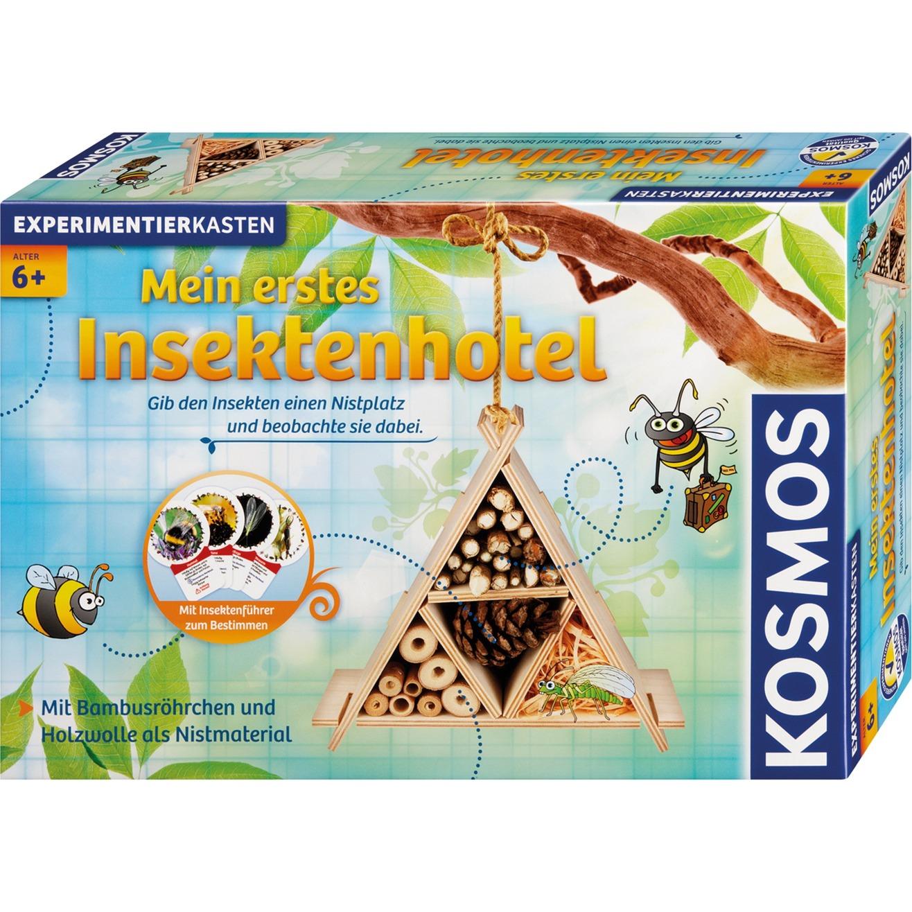 633042 juego educativo, Caja de experimentos