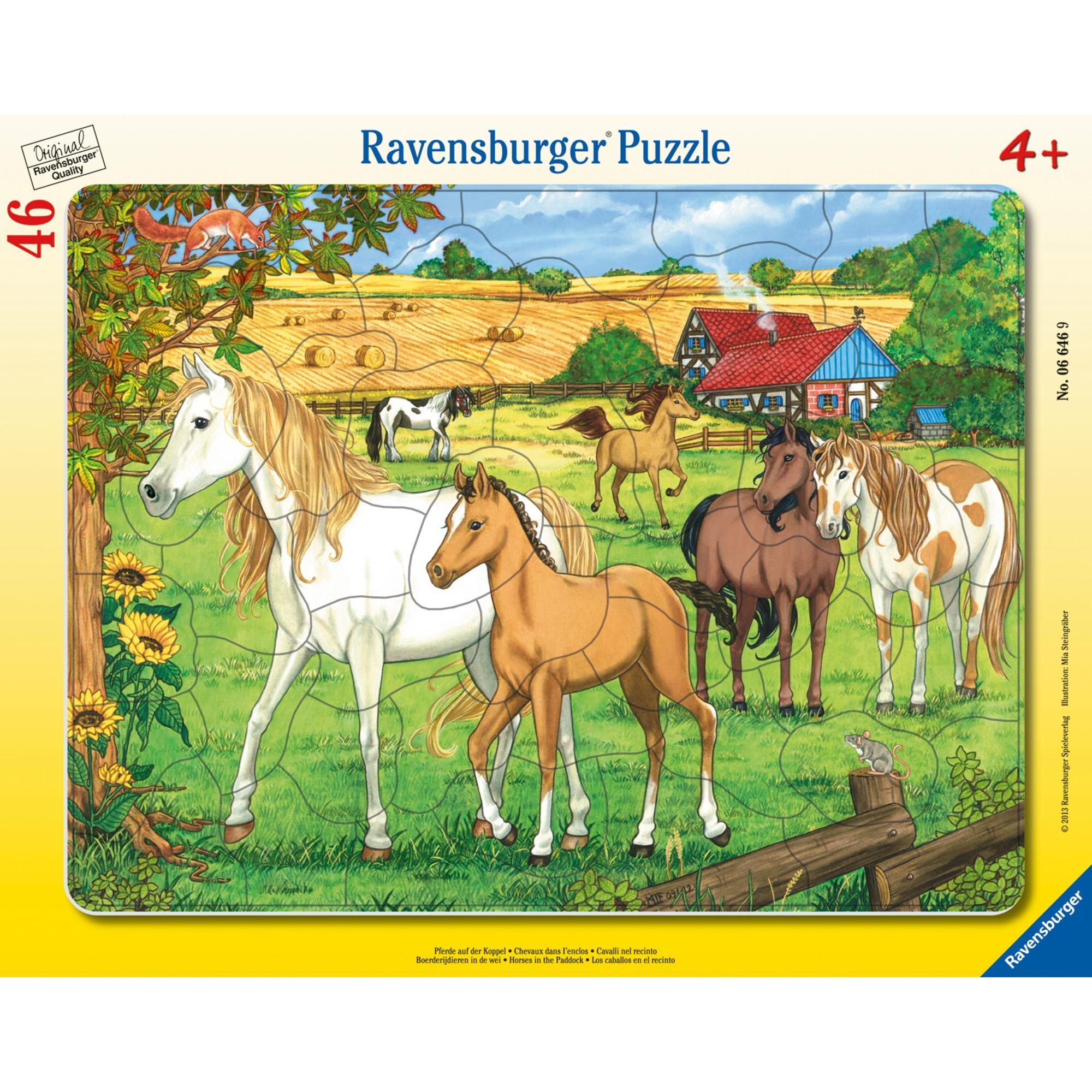00.006.646 puzzle 46 pieza(s)