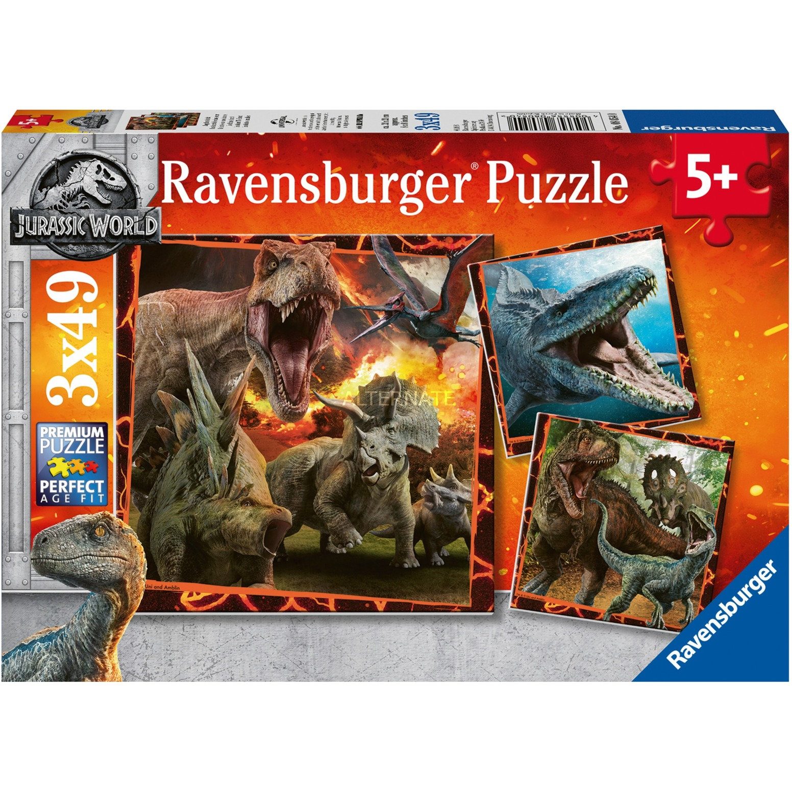 00.008.054 puzzle Puzzle rompecabezas 49 pieza(s)