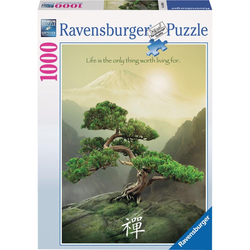 00.019.389 puzzle 1000 pieza(s)