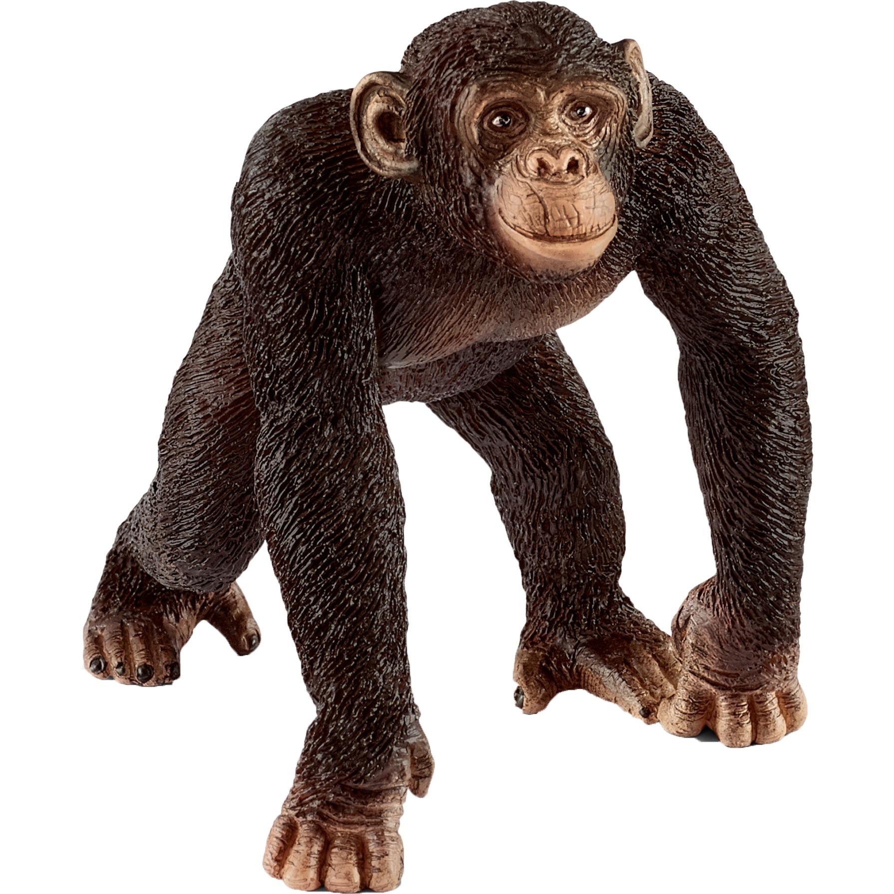 Schleich - Chimpancé