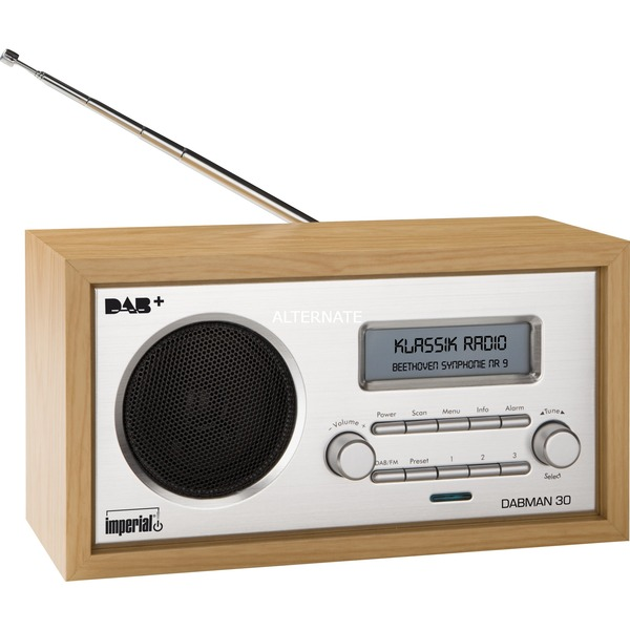 DABMAN 30 radio Personal Analógico y digital Plata