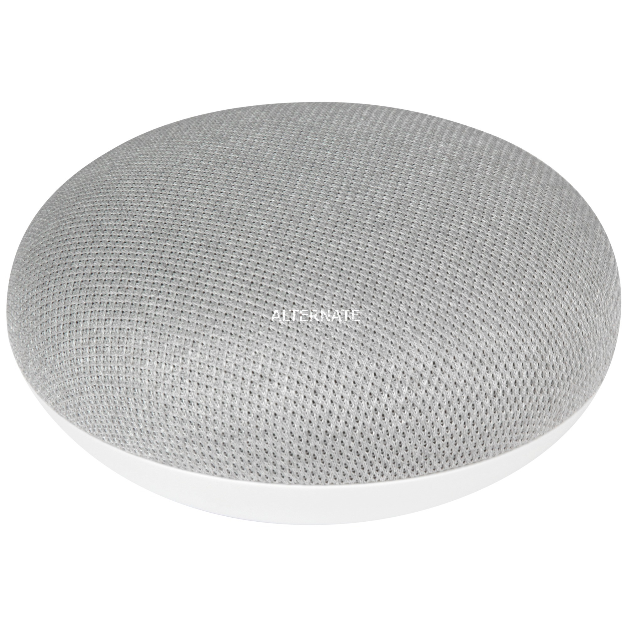 Home Mini Gris, Altavoz