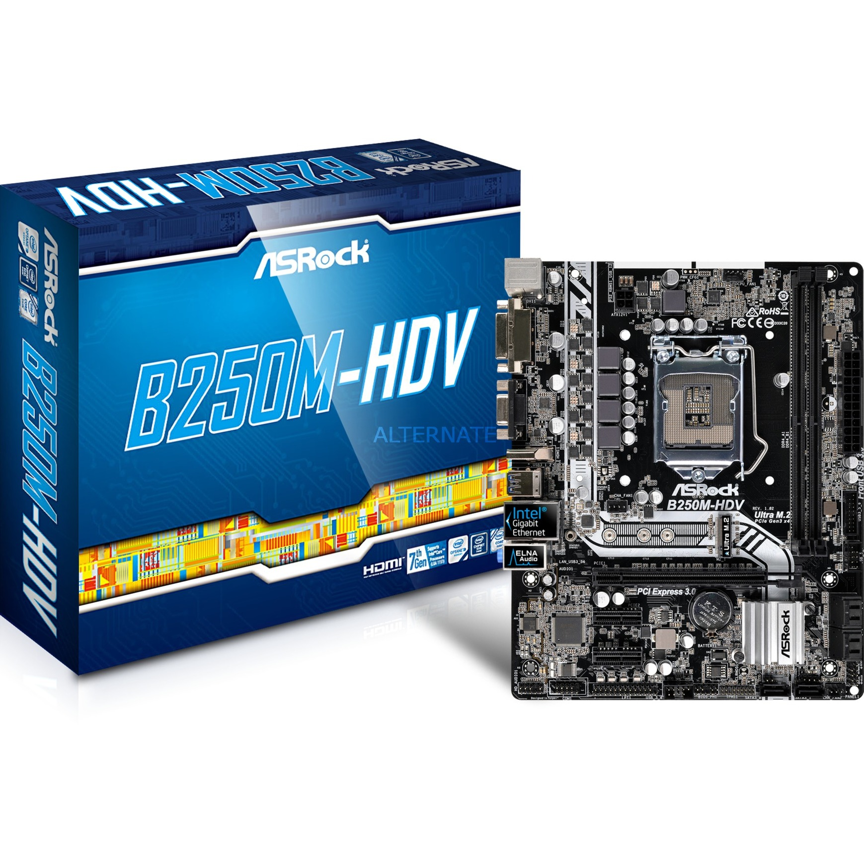 B250M-HDV Intel B250 LGA 1151 (Socket H4) microATX placa base