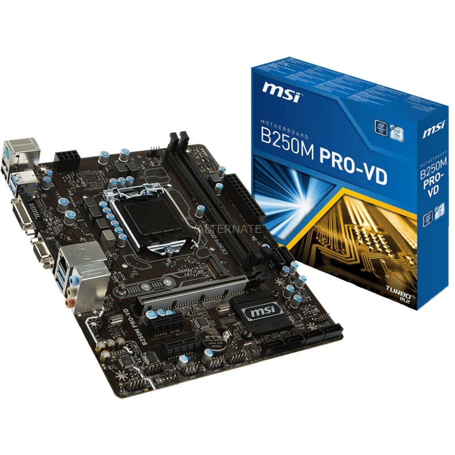 B250M PRO-VD LGA 1151 (Zócalo H4) Intel B250 micro ATX, Placa base