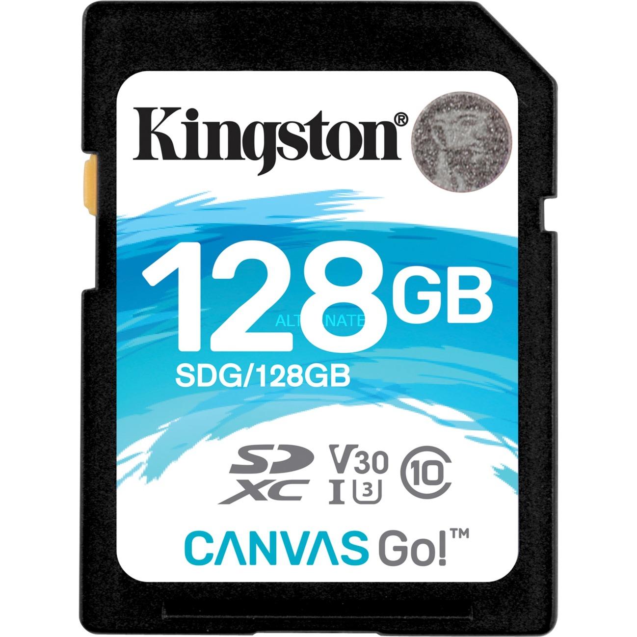 Canvas Go! memoria flash 128 GB SDXC Clase 10 UHS-I, Tarjeta de memoria