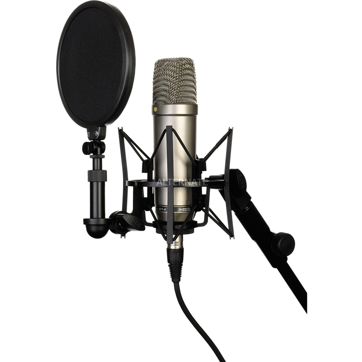 NT1, Micrófono