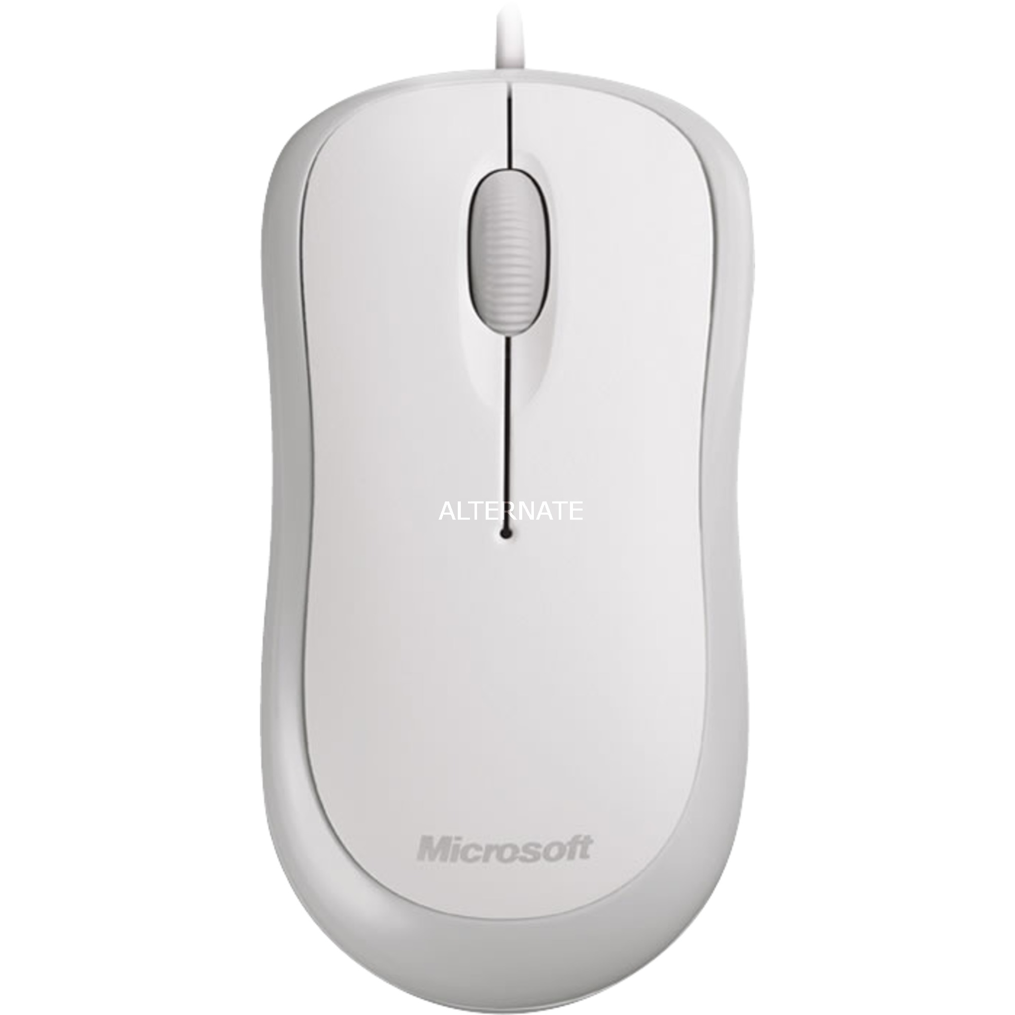 Basic Optical Mouse for Business USB Óptico 800DPI Ambidextro Blanco ratón